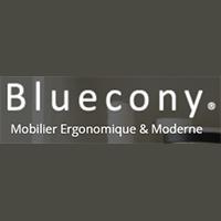 La circulaire de Bluecony - Ameublement