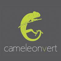 La circulaire de Caméléon Vert - Ameublement