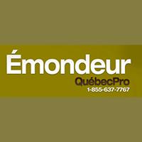 La circulaire de Émondeur Québec Pro - Émondage Et Élagage D'Arbre