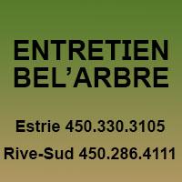 La circulaire de Entretien Bel'Arbre - Émondage Et Élagage D'Arbre