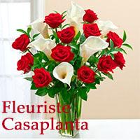 La circulaire de Fleuriste Casaplanta - Fleuristes