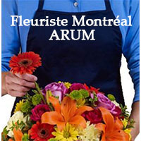 La circulaire de Fleuriste Montréal Arum - Fleuristes