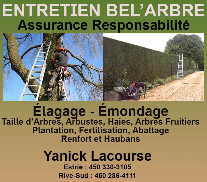 Circulaire entretien bel 39 arbre circulaire for Horaire costco laval