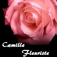 La circulaire de Camille Fleuriste - Boutiques Cadeaux