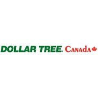 Dollar Tree Store - Dollar Store