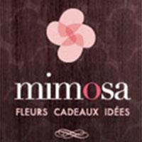La circulaire de Mimosa Fleurs Et Cadeaux - Boutiques Cadeaux