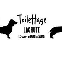 La circulaire de Toilettage Lachute - Animaux