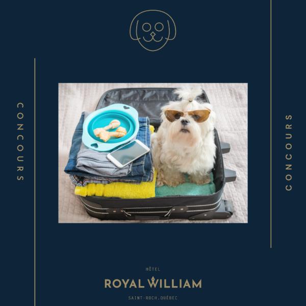 Concours Gagnez Une Nuitée Pour 2 Personnes Et Votre Toutou Au Royal William Hôtel!