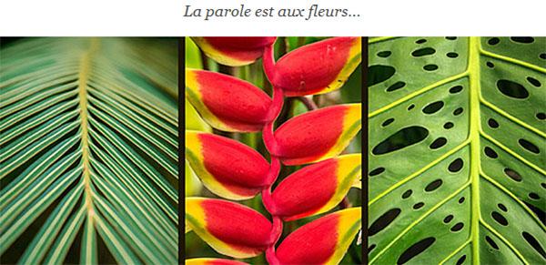 Charlot Fleuriste