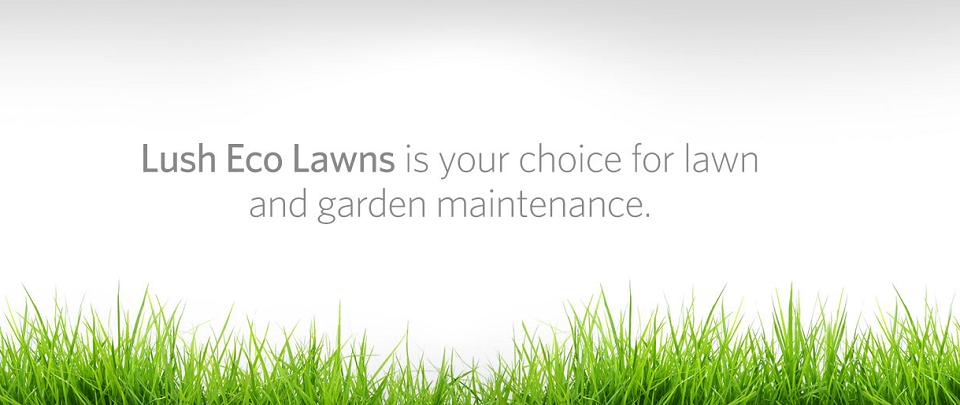 Lush Eco Lawns Online